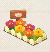 tulip-kadan